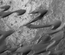 A field of sand dunes in the Nili Patera region is drifting toward the lower left, as indicated by the dunes' shapes, which scientists call a barchan. The dunes' dark tone also shows that the sand is free of dust, therefore the dunes are actively moving. The view covers an area 2.1 kilometers (1.3 miles) wide. (NASA/JPL-Caltech/Malin Space Science Systems)